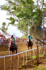 Kiwanis Race day is a huge event in Port Vila. Nearly a third of the