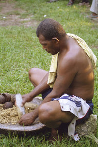 At the end of a project conference, I asked some friends of mine from the northern Banks Islands group to perform a kastom dance for the attendees, and to make kava for us. Kava for commercial consumption is generally washed in a  cement mixer and passed through a sausage grinder before being sieved through a woman's slip. The kastom method,  on the other hand, consists of grinding the kava with a decidedly phallic-looking coral stone, then  several times through a filter made of coocnut fibre.