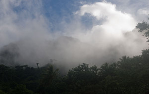 I woke up on our first morning in Pentecost, grabbed a slice of bread and some hot water, then wandered outside to this sight. The hillside directly above the village was swathed in cloud.