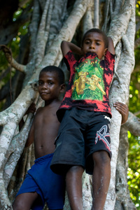 Two young boys seem relaxed amid the twisted trunks of a nambanga (banyan) tree.