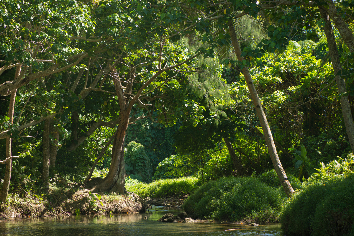 vila-around-the-island-with-jj-14.jpg