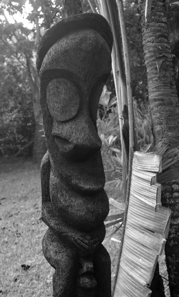 A black palm carving typical of the traditional Ambrym island style. Yes, the figure is doing what you think it's doing.