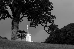 A few shots taken in Port Vila Cemetary.