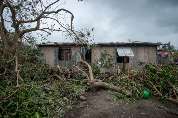 A few second round shots of the cyclone aftermath.
