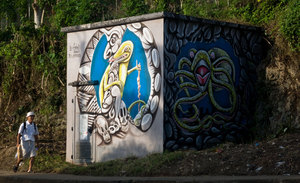 Another view of the artwork of David Tovovur, an artist from the island of Erromango commissioned to decorate some of the local power substations.